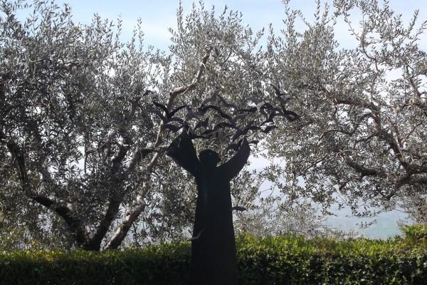 150420 In Claritas - Assisi 20