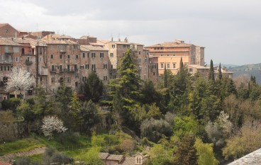 Reflections on Assisi Spring Retreat 2015 by Pam Fuhrmann